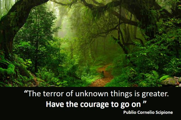 Publio Cornelio Scipione's quote#Come trasformi le tue paure in determinazione?